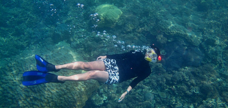 how snorkelers can help to protect ocean