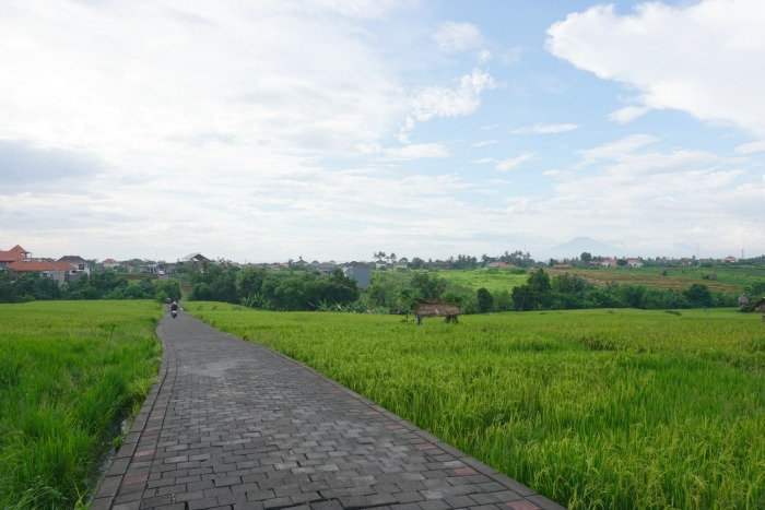 Canggu Shortcut from Batu Bolong to Berawa