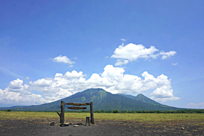 View over the Savannah at Baluran National Park in East Java.
