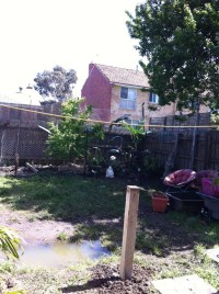 Backyard 2012 - Sandy Disney's Designs