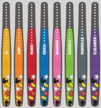 MagicBand On Demand Now Open | Disney World Enthusiast