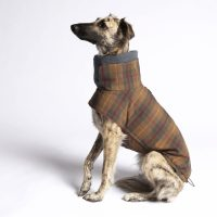 Waterproof Dog Coats by Cloud7 - disruptivedog.com