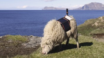 Watch out Google Street View  – SheepView is here. Bah!