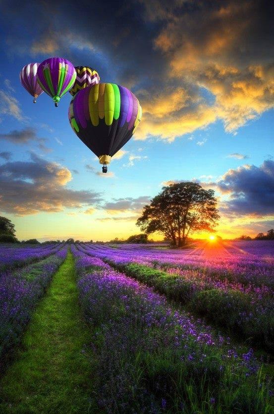 balloons-2.jpg?fit=553%2C834