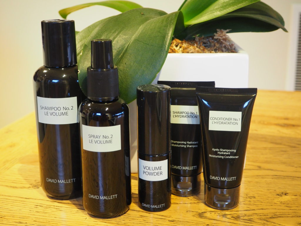 Salon David Mallett David Mallett Hair Care A Product Review Distant Francophile