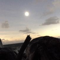 Nov. 13 Eclipse video (at last!)