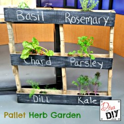 Small Of Diy Herb Gardens