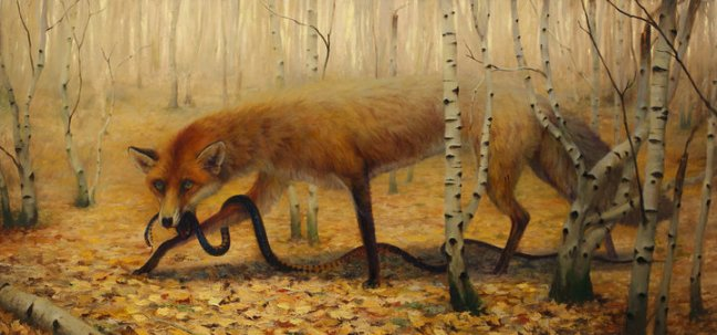 corey-gallery-shot-fox-whit