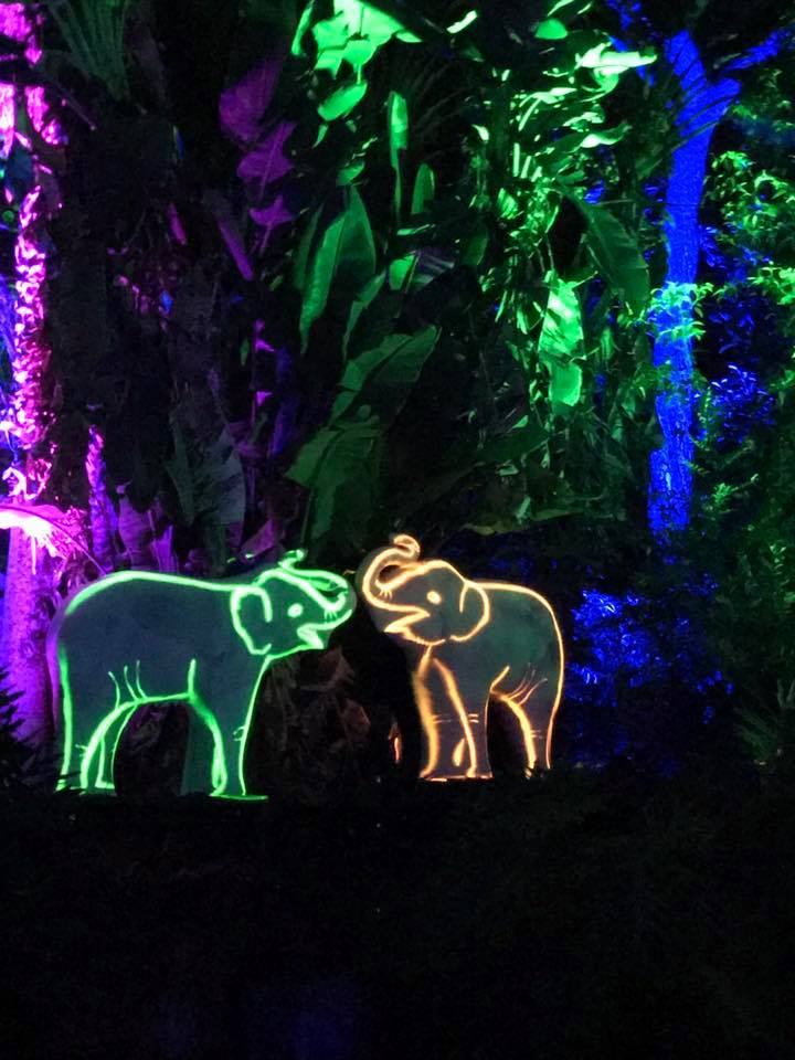 Zoo String Lights : 28+ [Lights At The Zoo] - Tickets Now On Sale For Detroit Zoo S 2016 Lights, Zoolights Zoo ...
