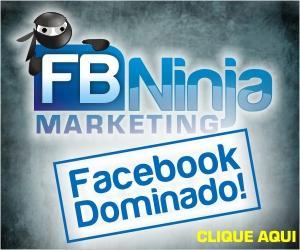 magnet system facebook fb ninja marketing silvio fortunato