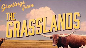 greetings-from-grasslands-featured