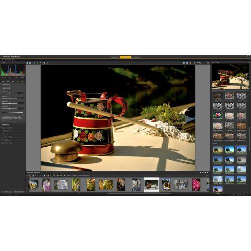 Medium Crop Of Paint Shop Pro X8