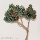 Bonsai tree with pine cones