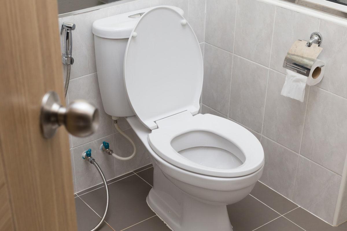 wc accessoires | pointwc accessoires wc et toilettes pointwc wic