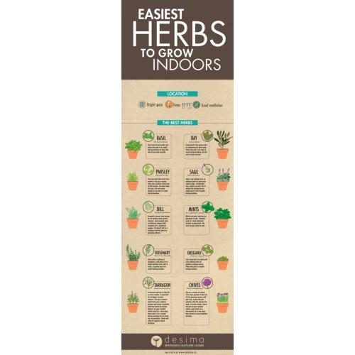 Medium Crop Of Build An Herb Garden