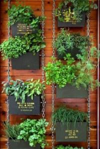 DIY Garden: Top Gardening Ideas for Small Balcony Garden ...