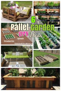 6 DIY Pallet Garden Ideas and Furniture for your Small ...