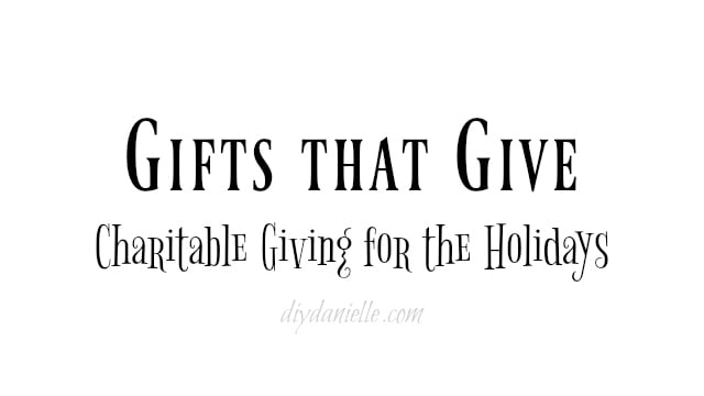 Gifts that Give Charitable Giving for the Holidays - DIY Danielle
