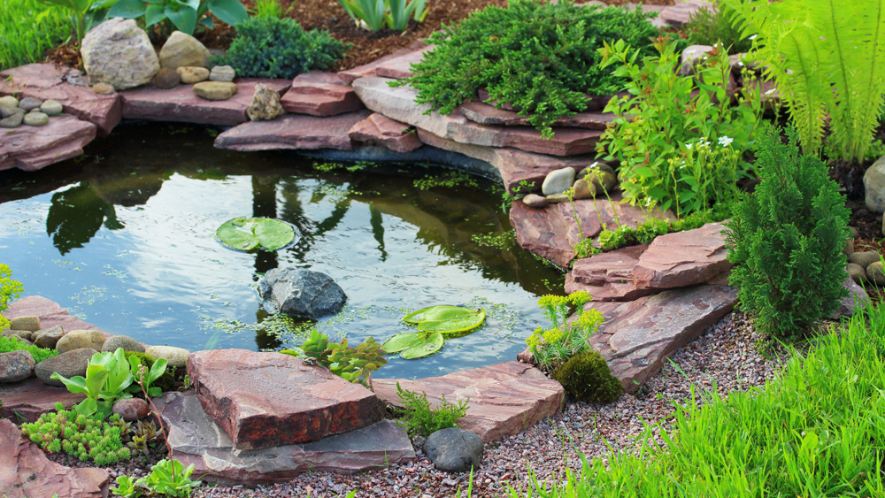 Koiteich Anlegen How To Build A Garden Pond | Making A Pond | Diy Doctor