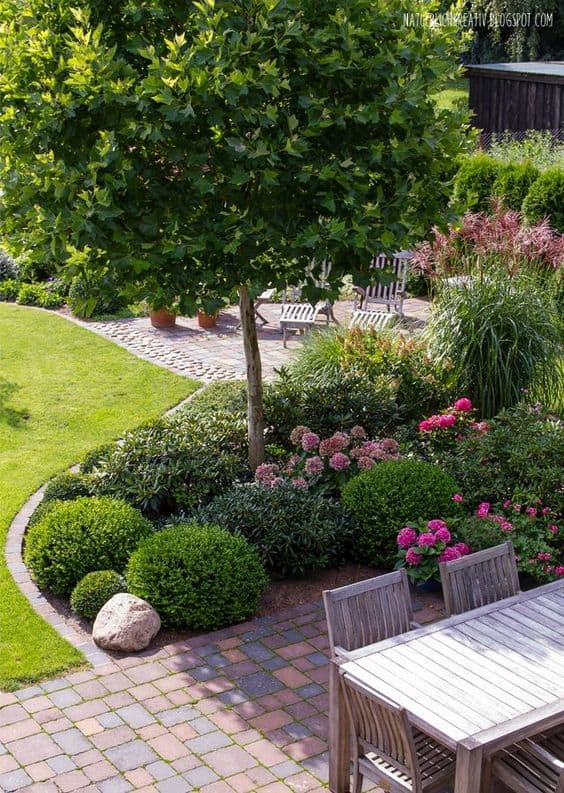 Pinterest Garten Bepflanzung 33 Best Trees For Small Gardens That Won't Limit Your