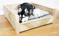 DIY Custom Wooden Dog Bed - DIY Huntress