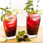 blackberry mojito tn