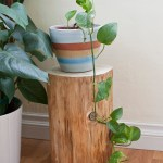 log plant stand 1