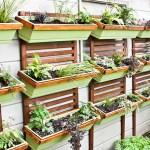 vertical garden 8