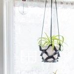 Make a DIY Leather Plant Hanger