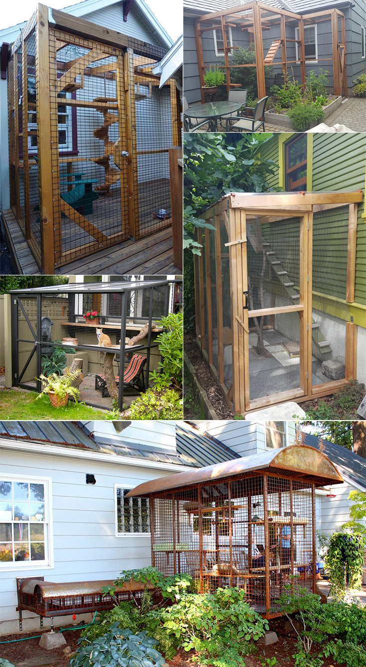 Catio inspiration. Worried about letting your cat outdoors? Build a cat enclosure to help keep it safe!