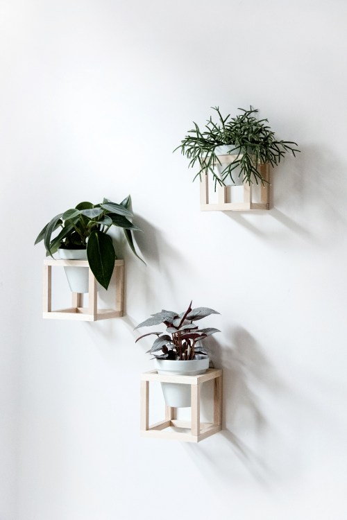Cube hanging planters