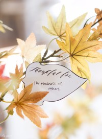 34 Best Thanksgiving Decor Ideas
