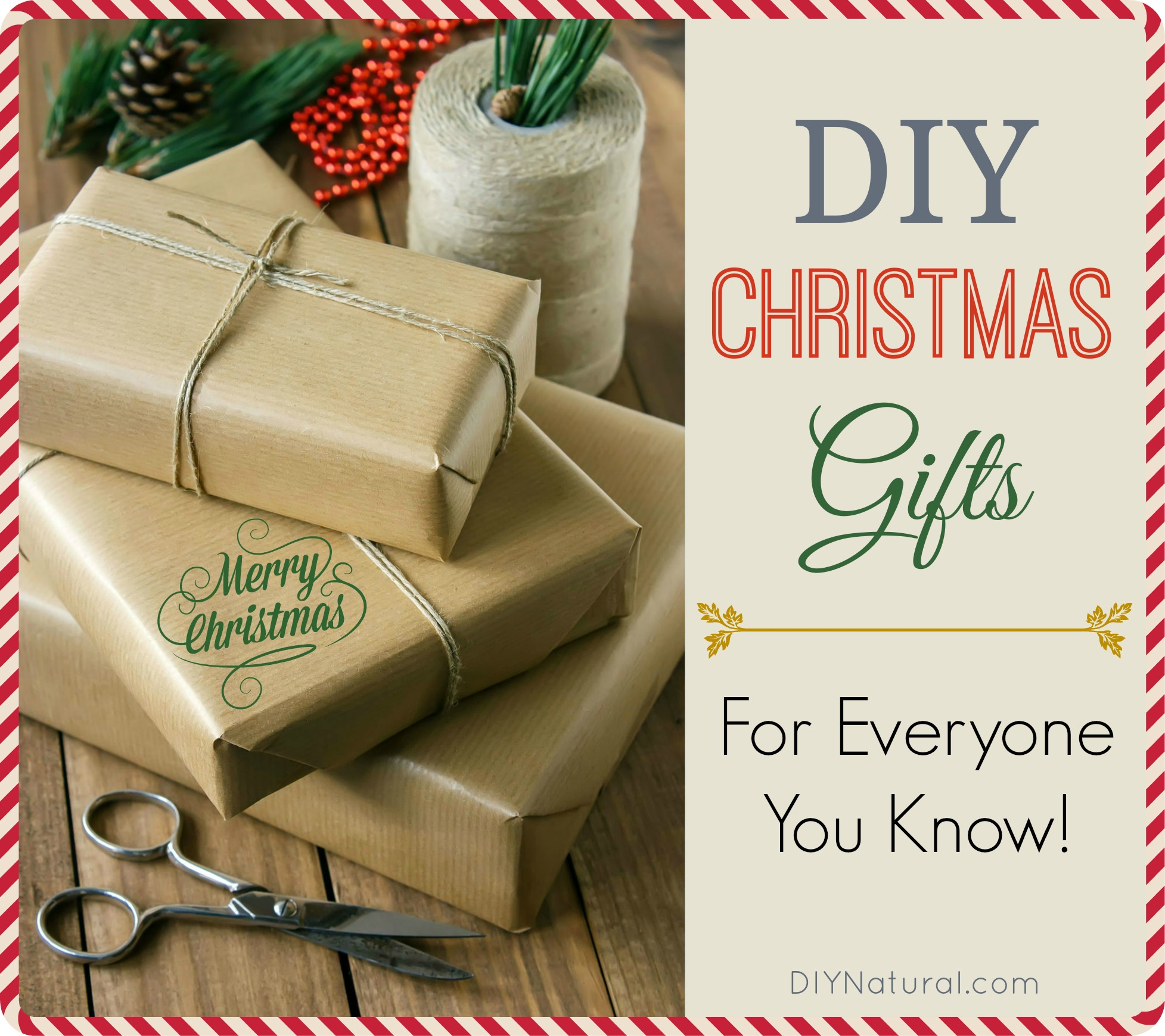 Christmas Homemade Gifts Diy Christmas Gifts For Everyone You Know