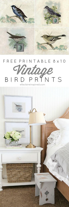 Diy Crafts Ideas  Free Printable 8x10\