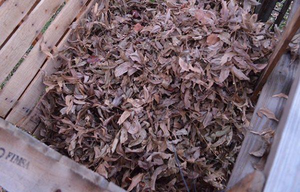 Compost Bin Instructions
