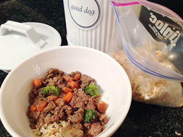 DIY Dog Food Recipe