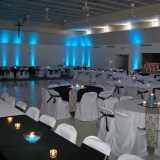 malibu-blue-wedding-pinspotting-uplighting