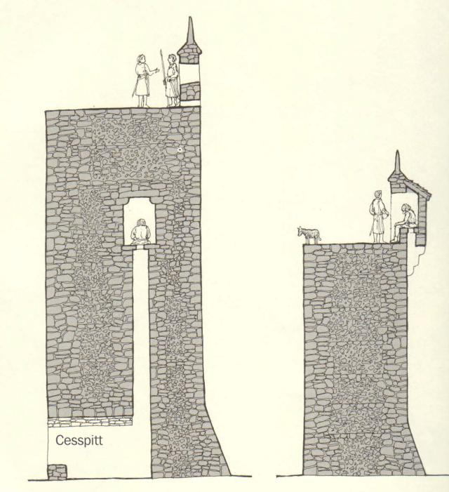 medieval cess pit