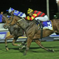 past master wins the drill hall stakes