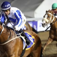 Greyville Hat-Trick Of Winners