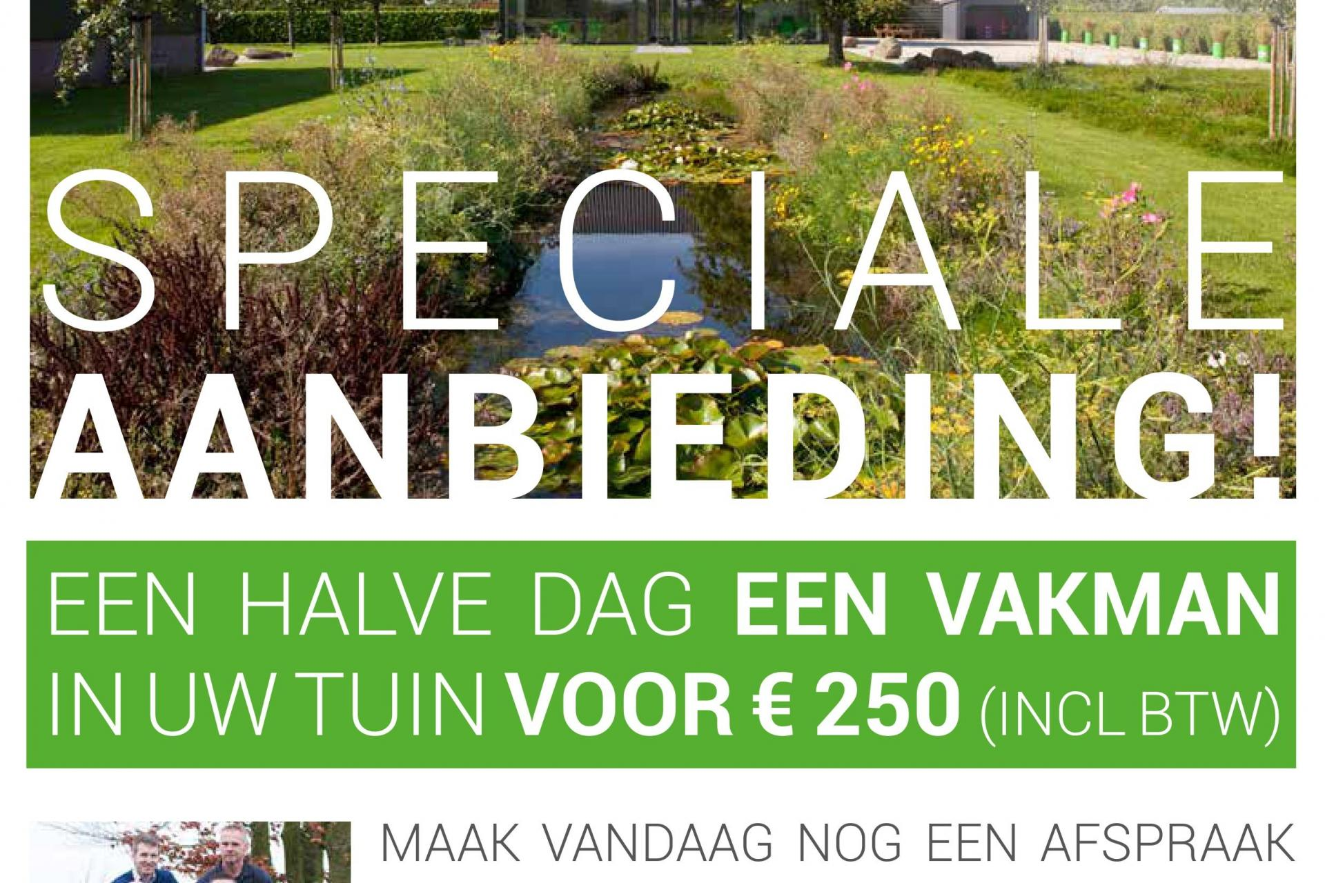 Mocking Hoveniers Speciale Aanbieding Dutch Quality Gardens