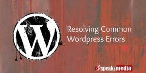 resolving wordpress errors