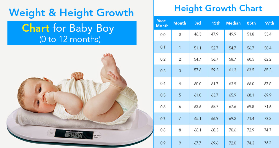 Weight and Height Growth Chart for Baby Boy (0 to 12 months)
