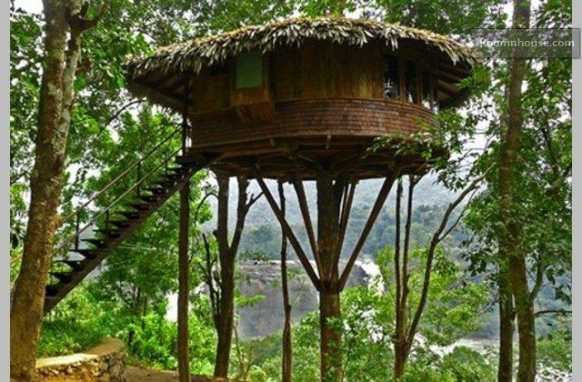 Treehouse In Athirapally Kerala