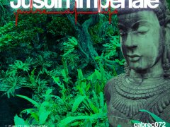 Justin Imperiale – Pulse Of Life (Cabana Recordings)