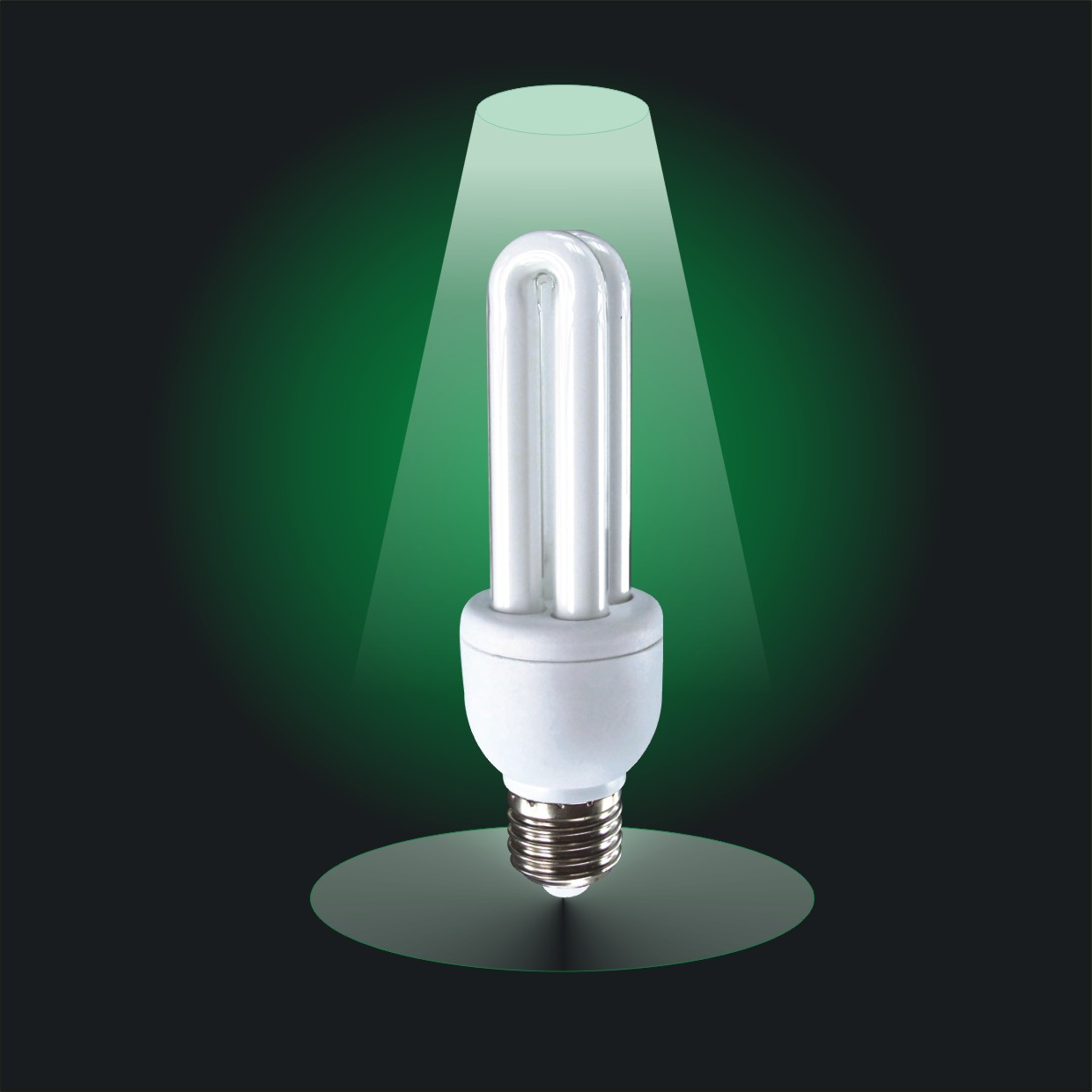 Cfl Bulbs Cfl Light Bulb Facts Decoratingspecial
