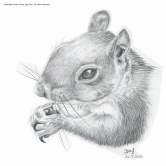 Sketch of a squirrel eating, pencil on A5 paper
