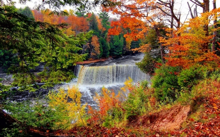 Falling Leaves Wallpaper Screensavers Autumn Waterfall Waterfalls Amp Nature Background