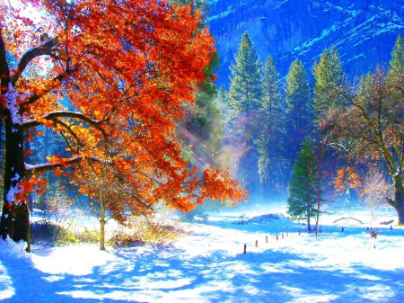 Wallpapers For Desktop Fall Colors First Snow Other Amp Nature Background Wallpapers On