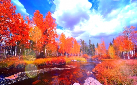 Fall Leaves Watercolor Wallpaper Colorful Fall Rivers Amp Nature Background Wallpapers On